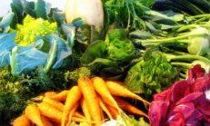 Kış sebzeleri C vitamini