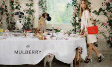 Cara Delevingne 2014 Yaz Mulberry Koleksiyonunda.!
