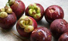 Meyvelerin kralicesi: mongosten!