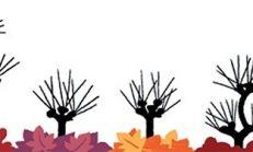 Sonbahar ekinoksu'nu doodle nedir?