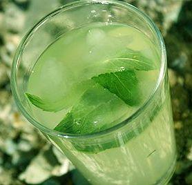 limon-nane-serbeti